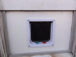 Cat Door Installed in Window Outside View